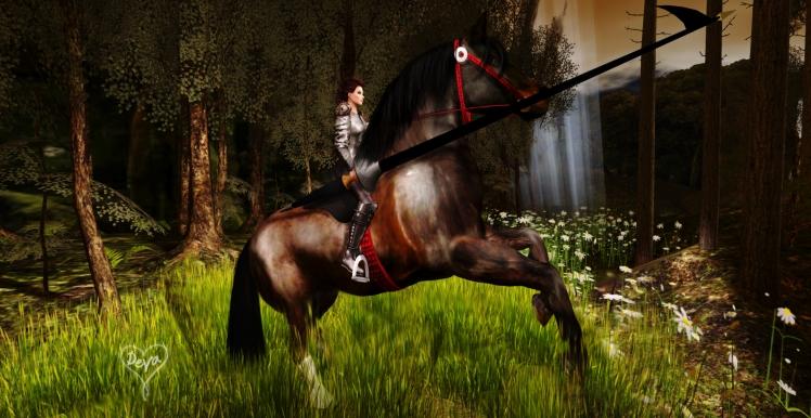HorseKnight.jpg